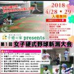 第1回 女子硬式野球新潟大会(ポスター最終)⑧_t.jpg(JPEG) (2)
